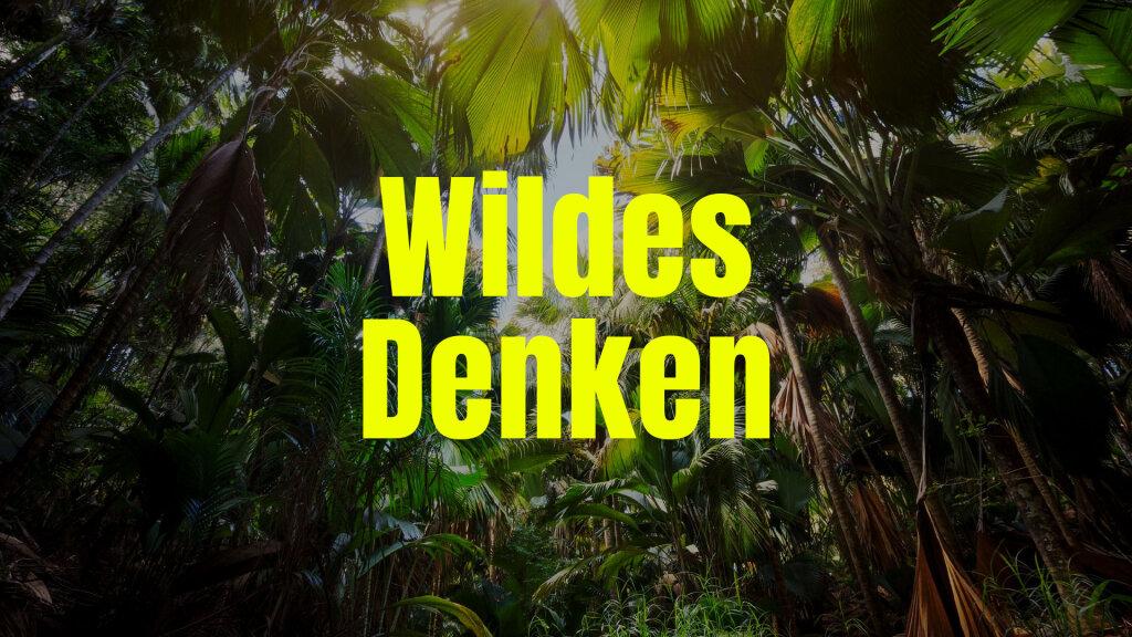 Wildes Denken Booklet